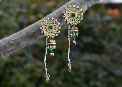 Stylish earrings hanging on tree branch