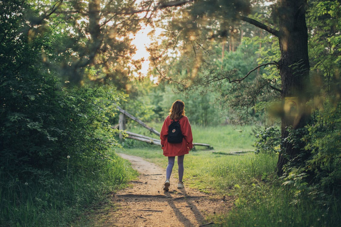 Full body back view of unrecognizable young female walking on pathway in green dense grove