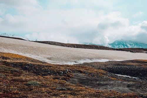 假期, 冒險, 冰島, 冷 的 免費圖庫相片
