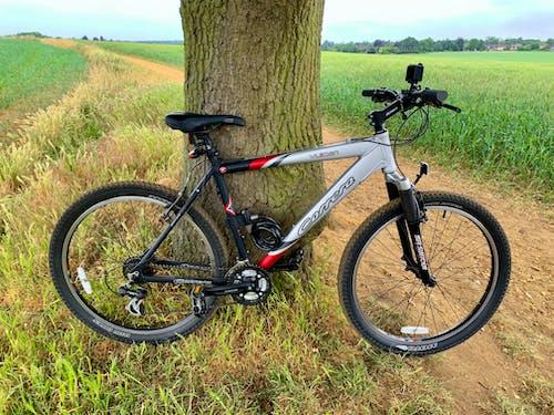 Foto profissional grátis de andar de bicicleta, bicicleta, bike, ciclo