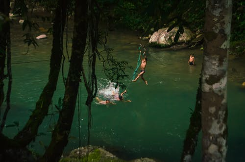 Anonymous children jumping into lake water in forest