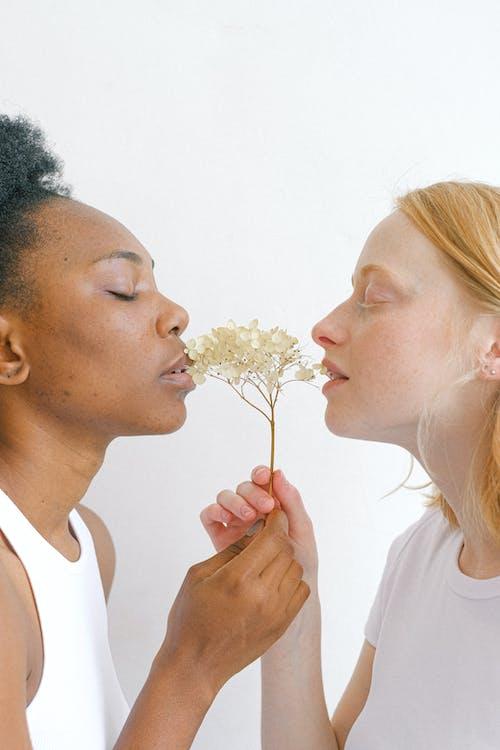 Fotos de stock gratuitas de afecto, afroamericano, amantes