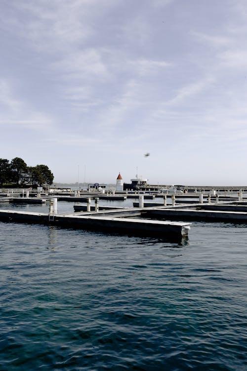 Бесплатное стоковое фото с вода, водный транспорт, гавань, город