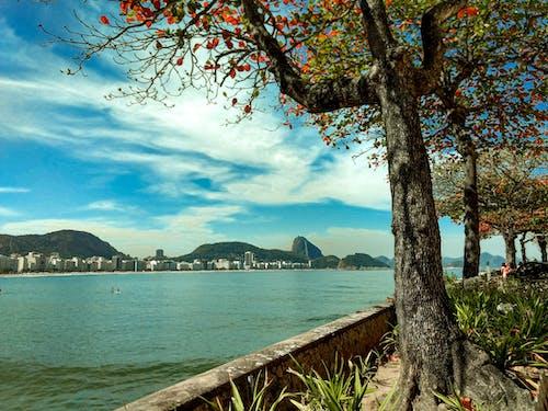 Fotobanka sbezplatnými fotkami na tému Brazília, céu, céu azul, copacabana