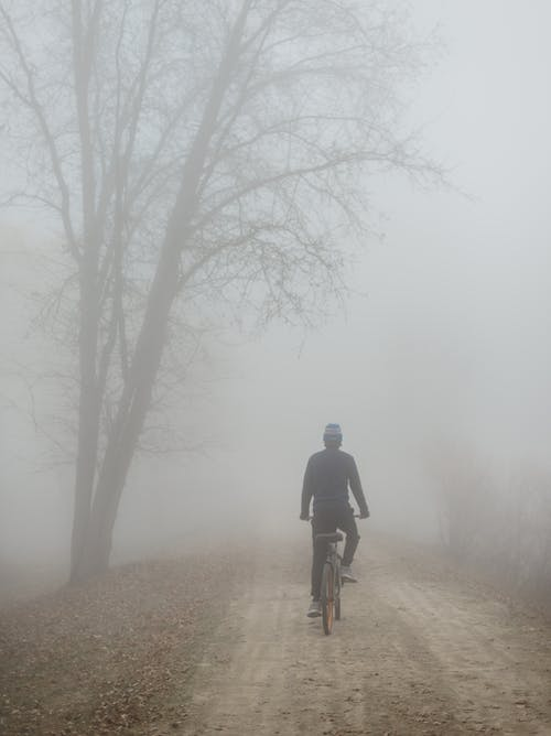 Unrecognizable man riding bicycle in foggy park
