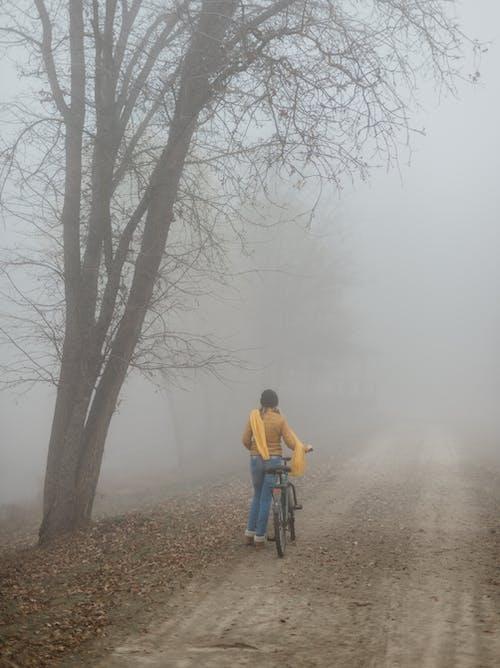 Ingyenes stockfotó arctalan, békés, bicikli, borongós témában