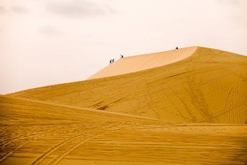 People Walking on Desert Sand