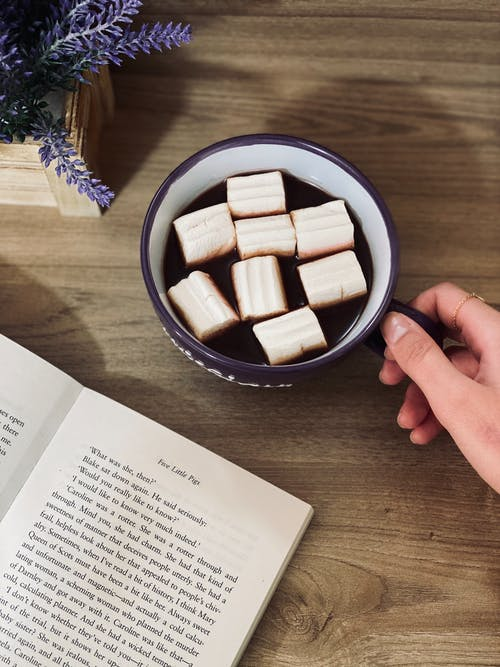 White Sugar Cubes in Black Ceramic Bowl