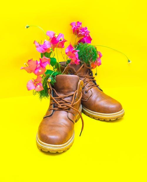 Безкоштовне стокове фото на тему «барвистий, блискучий, букет»