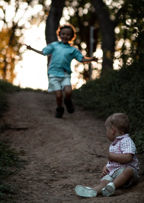 Cute little children playing together in forest