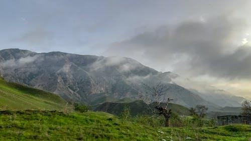 Free stock photo of blur, clouds, fog, grass
