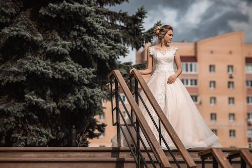 abiye elbise, açık hava, ağaç içeren Ücretsiz stok fotoğraf