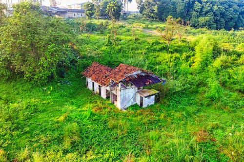 Photos gratuites de abandonné, aérien, arbre, architecture
