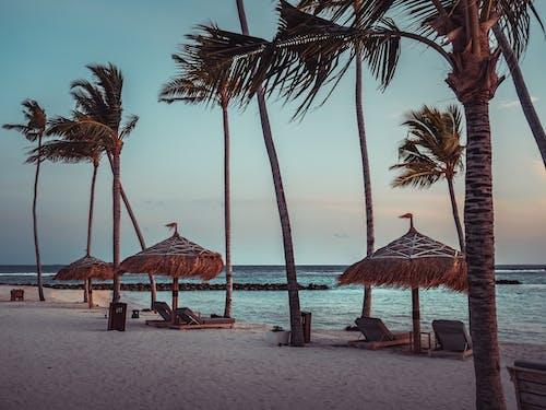 Tropical seashore with parasols at sunset