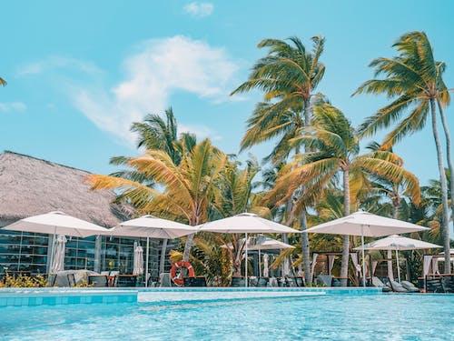 Tropical resort poolside in sunlight