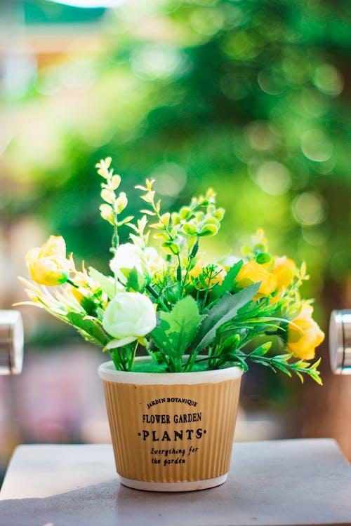 Artificial Flowers on a Flower Pot