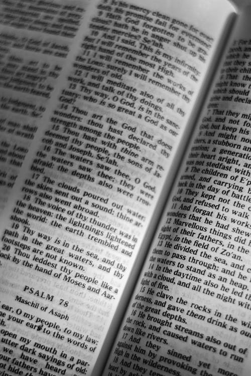 Close Up of a Bible
