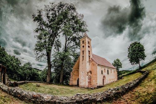 Бесплатное стоковое фото с архитектура, башня, дерево, дом