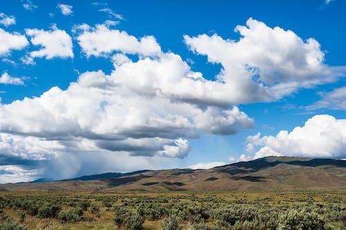 乾的, 夏天, 夏季, 山 的 免費圖庫相片