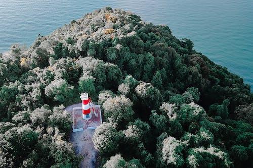 Ảnh lưu trữ miễn phí về biển, bờ biển, cảnh biển, cây
