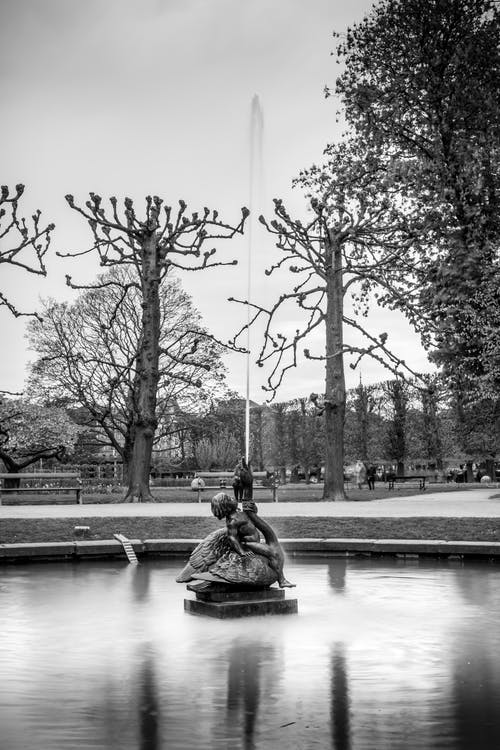 Imagine de stoc gratuită din alb-negru, arbori, artă, cer