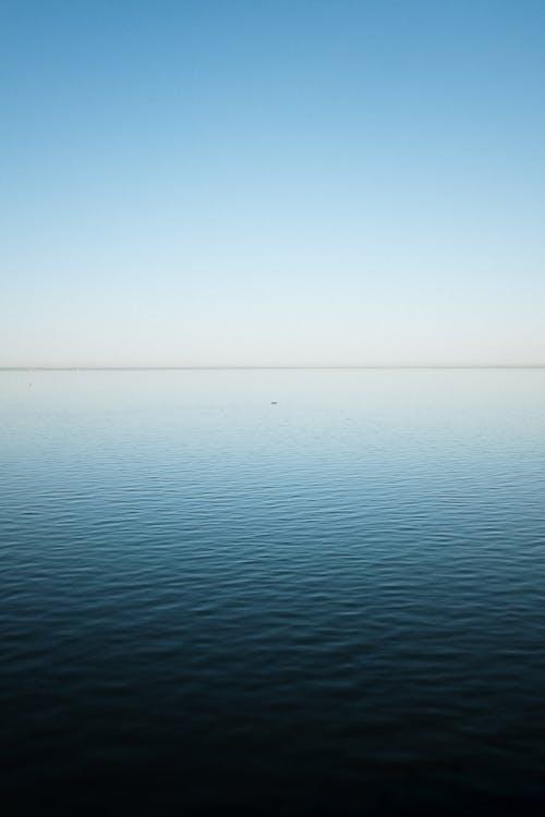 Gratis lagerfoto af blå, bølge, dyb blå
