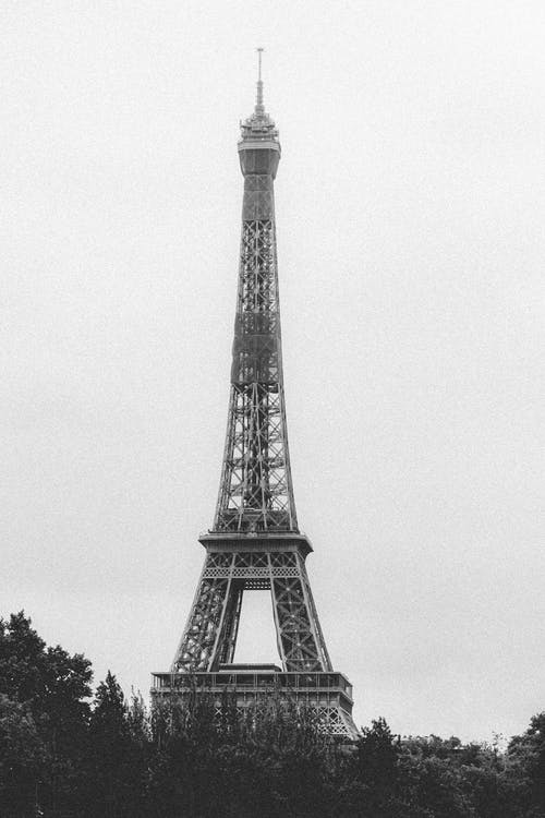 Black and white of grey cloudless sky over majestic wrought iron lattice Eiffel tower near tall trees in Paris in France
