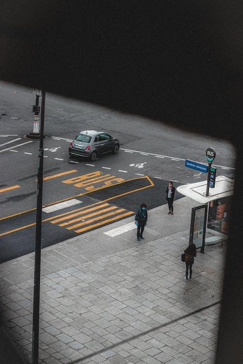 Pedestrians on bus station near zebra crossing