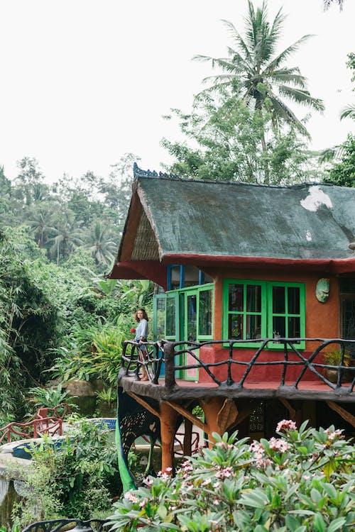 Foto stok gratis alam, Arsitektur, bagus, balkon