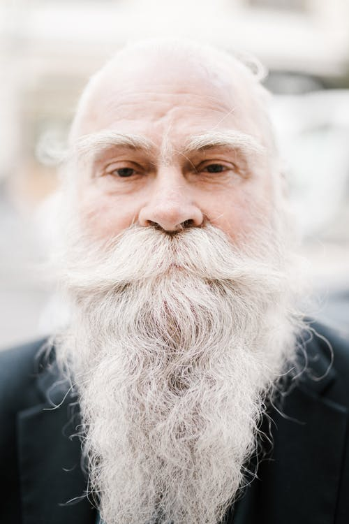 Portrait of peaceful elderly male with long white haired beard and mustache looking at camera on sunny day