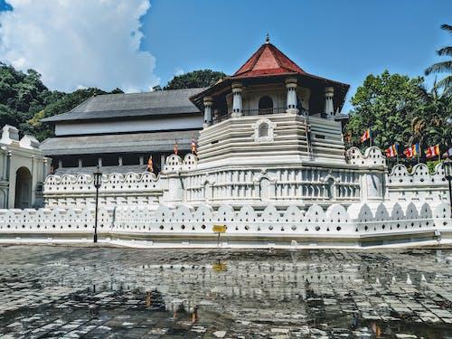 Immagine gratuita di buddha, edificio, kandy, tempio