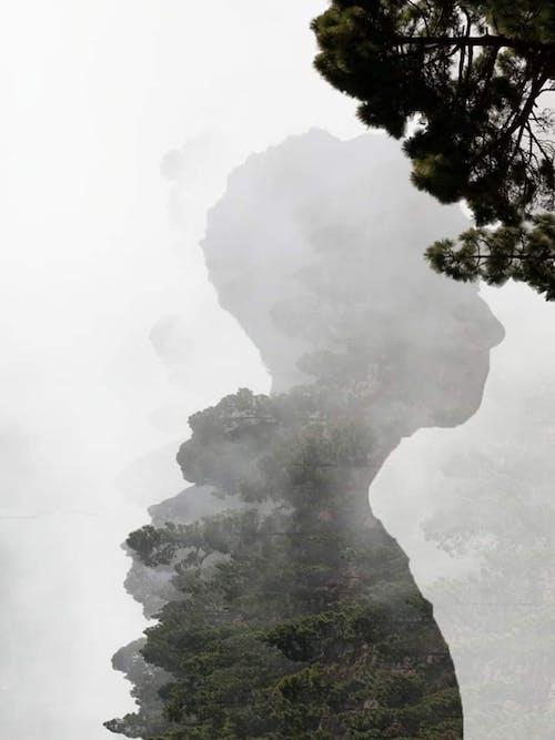 Kostenloses Stock Foto zu baum, berg, draußen, eruption