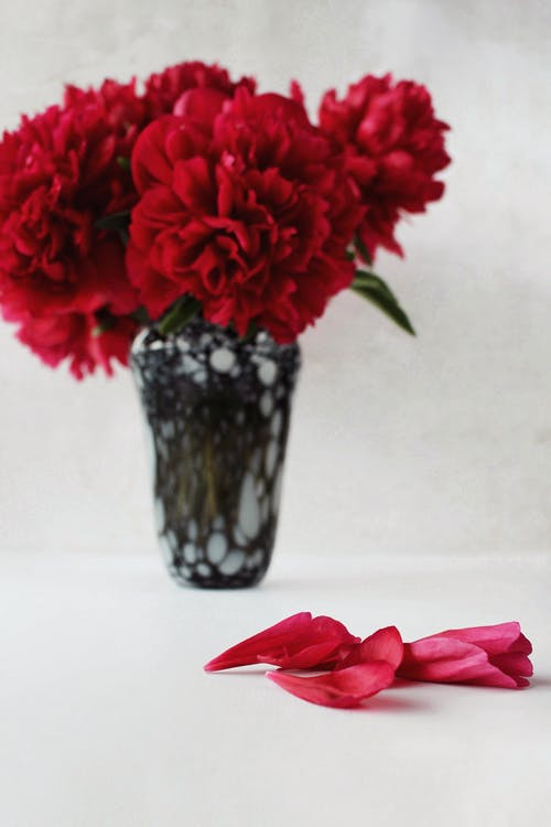 Red Flowers in Clear Glass Vase
