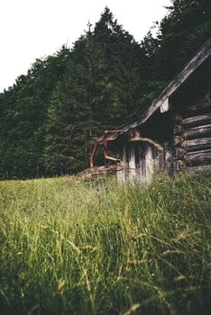 Free stock photo of forest, meadow, wooden cabin