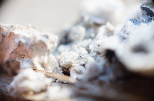Free stock photo of ash, fire, macro