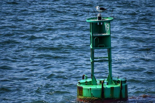 Základová fotografie zdarma na téma bóje, oceán, tapeta, voda