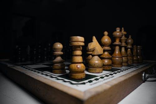 戰略, 戰術, 木 的 免費圖庫相片