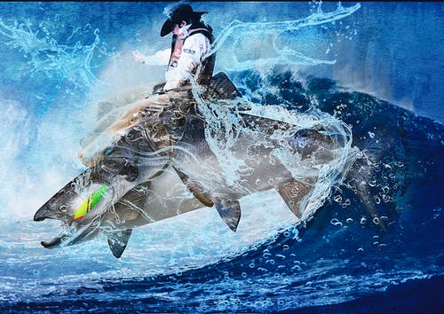 Free stock photo of fishing, leaping, riding, rodeo