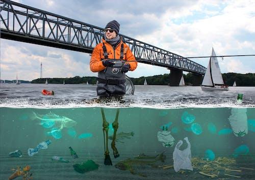 Free stock photo of fish, fishing, plastic, pollution