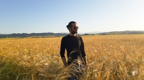 Free stock photo of 1 man, alone, farm, man