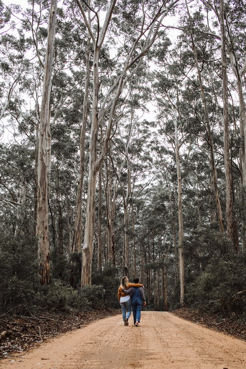 Couple walking together on footpath in forest