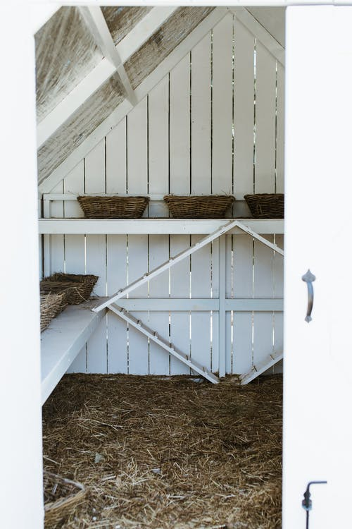 Countryside coop with wooden shelves and similar wicker baskets above straw on floor in daylight