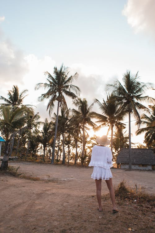 Back view full body of anonymous female tourist standing on empty sandy coast with tropical palms at sunset