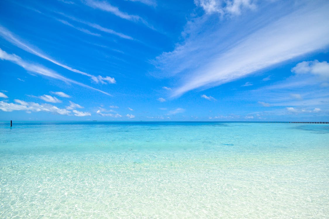 Clear Blue Shore