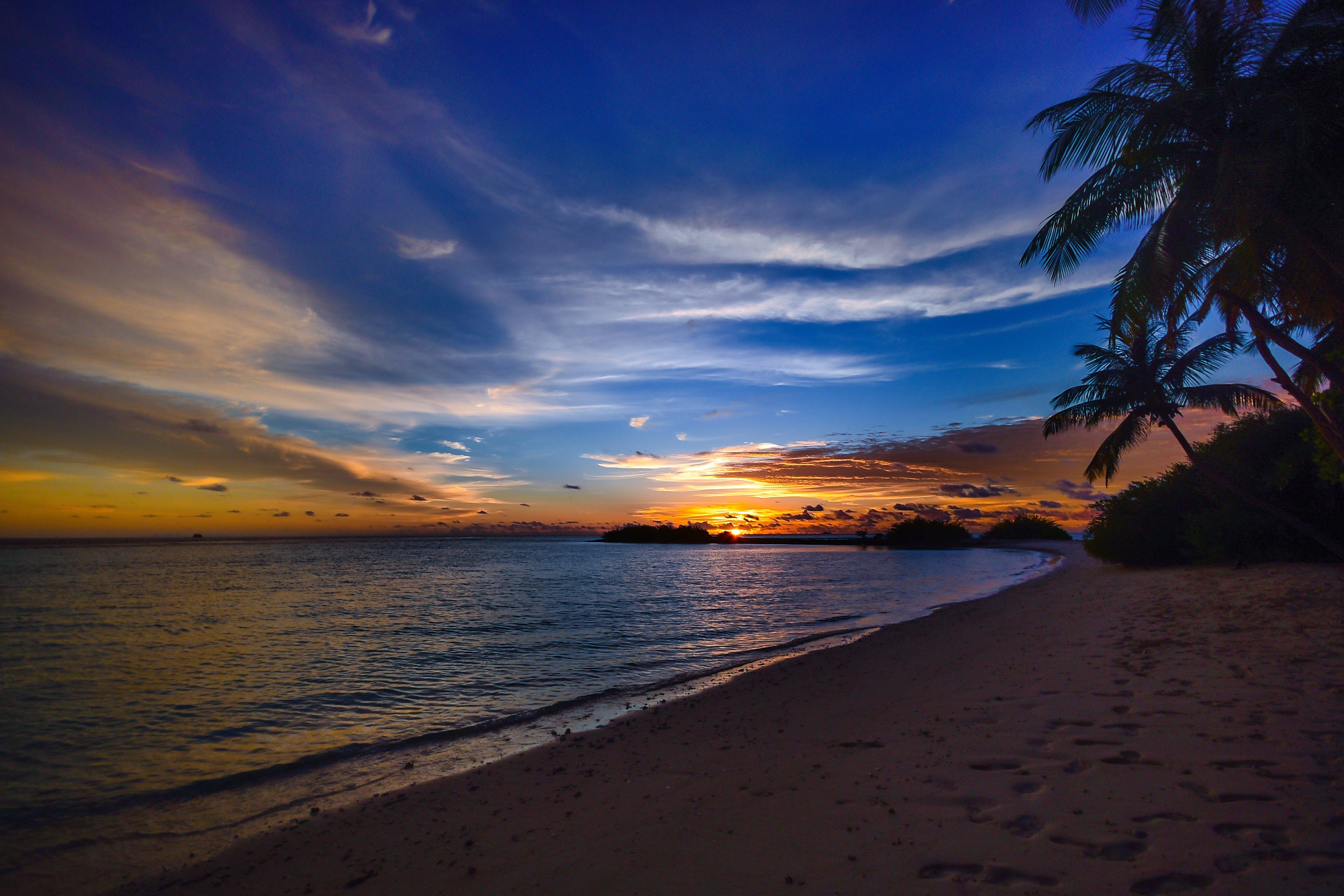 Silhouette of Seashore