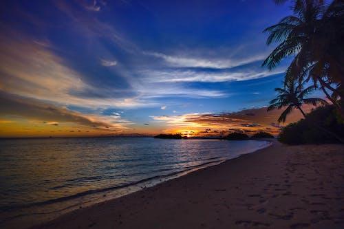 Бесплатное стоковое фото с вода, восход, деревья, живописный