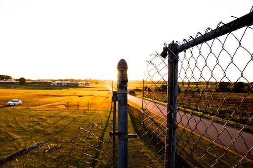 Free stock photo of beautiful, chain link fence, daylight