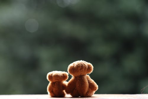 Cute retro plush teddy bears in different sizes placed on wooden bench against blurred green trees in park
