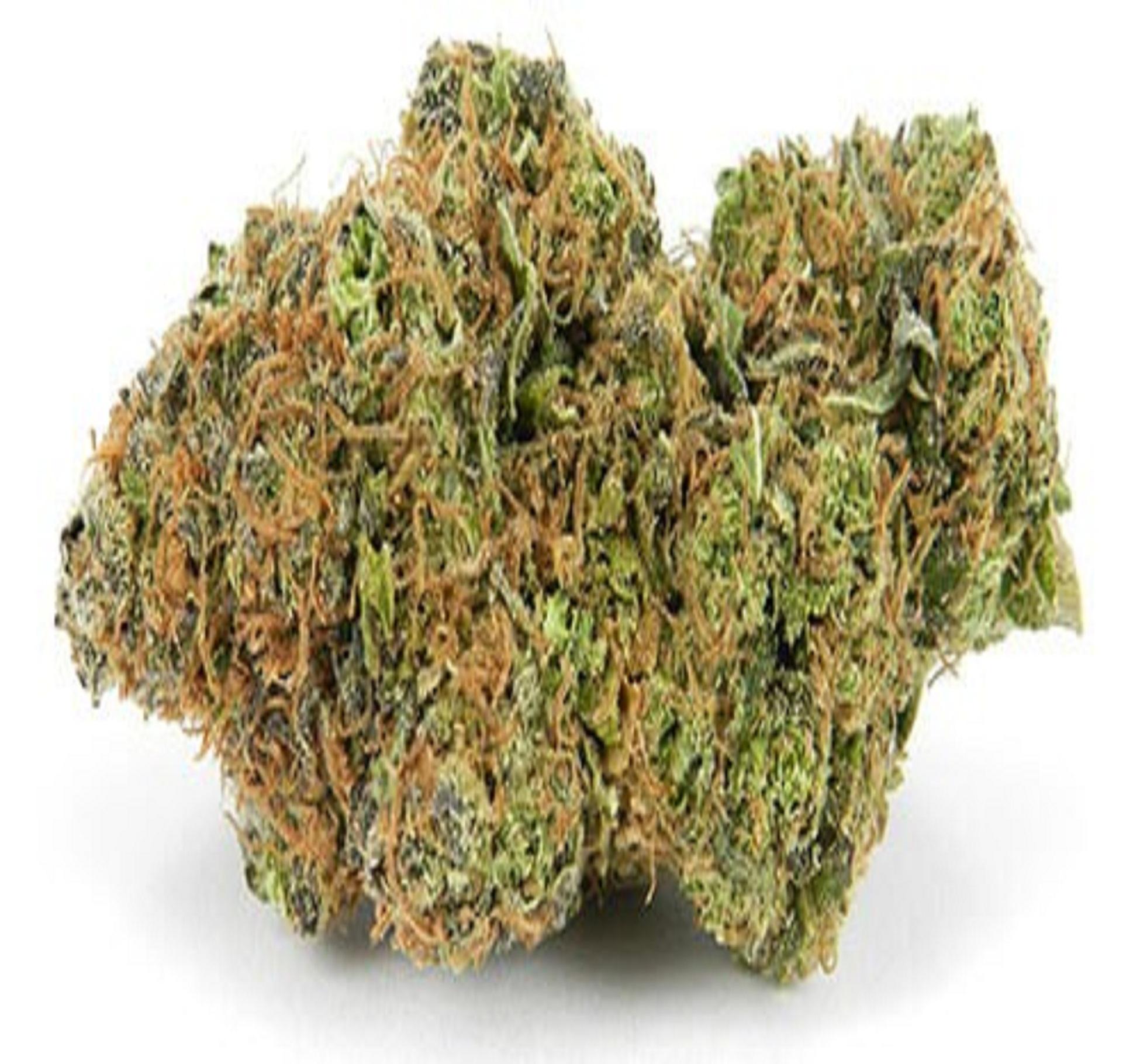Free stock photo of buy marijuana online canada
