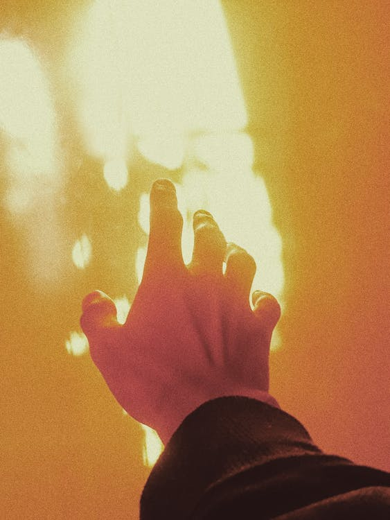 Free stock photo of color, hand, hands